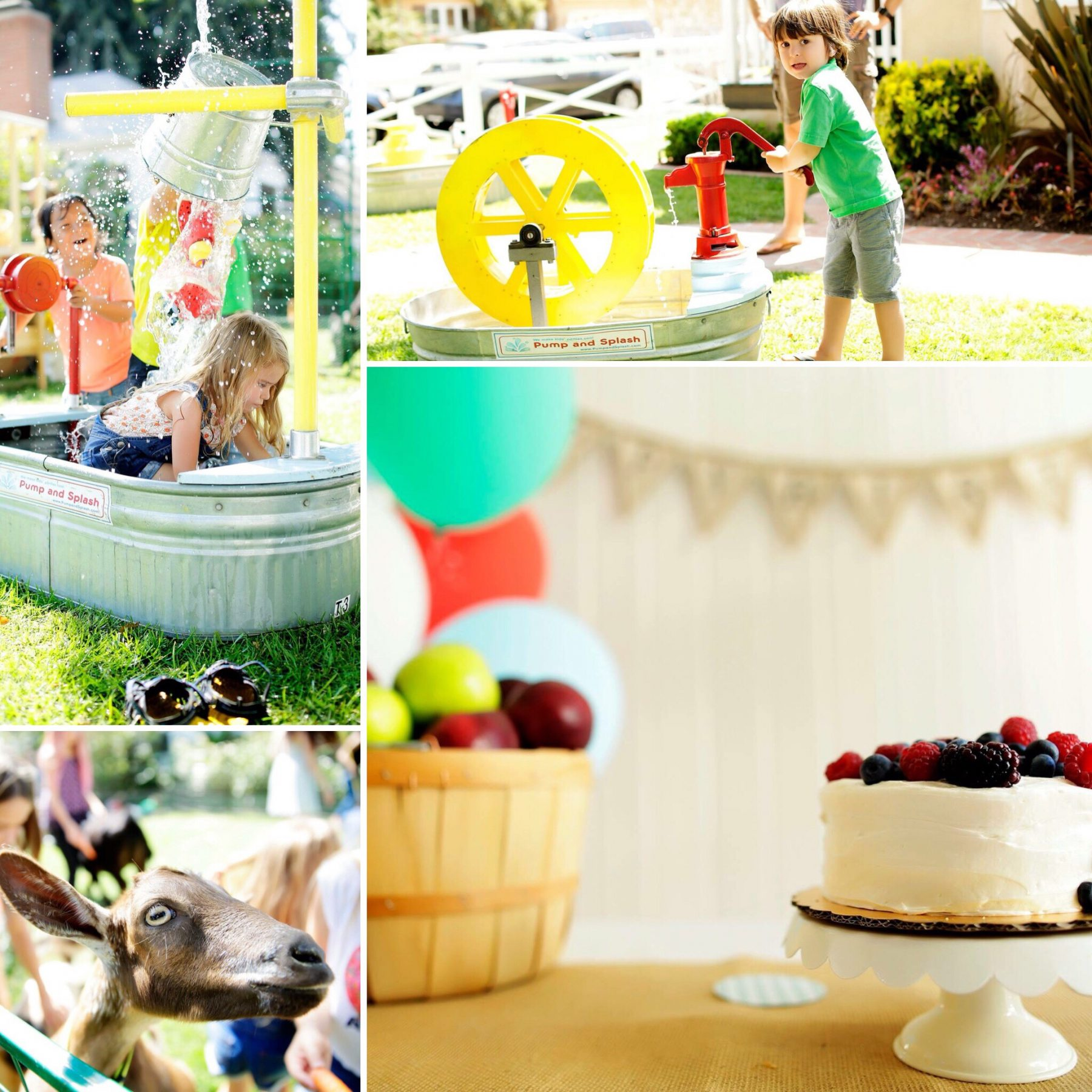 Farmers Market Birthday Party Ideas and Inspo Pics Activities Petting Zoo