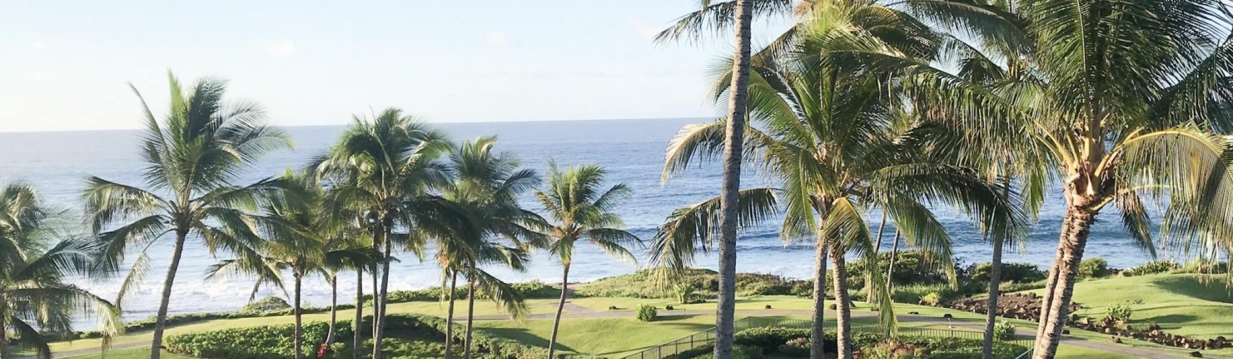 Check out the Grand Hyatt Kauai!