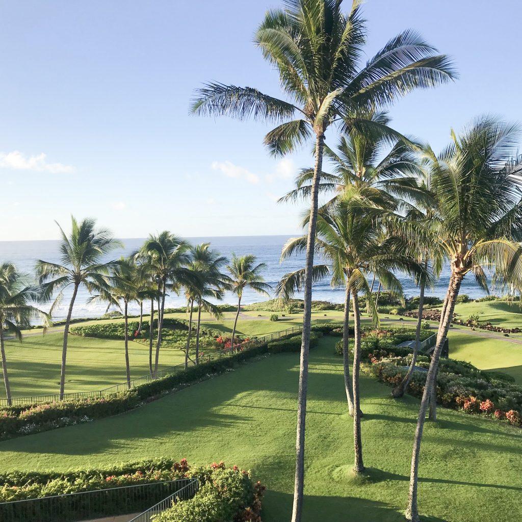 The Grand Hyatt Kauai Ocean View Room
