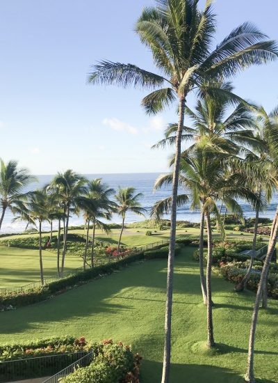 The Grand Hyatt Kauai Ocean View Room