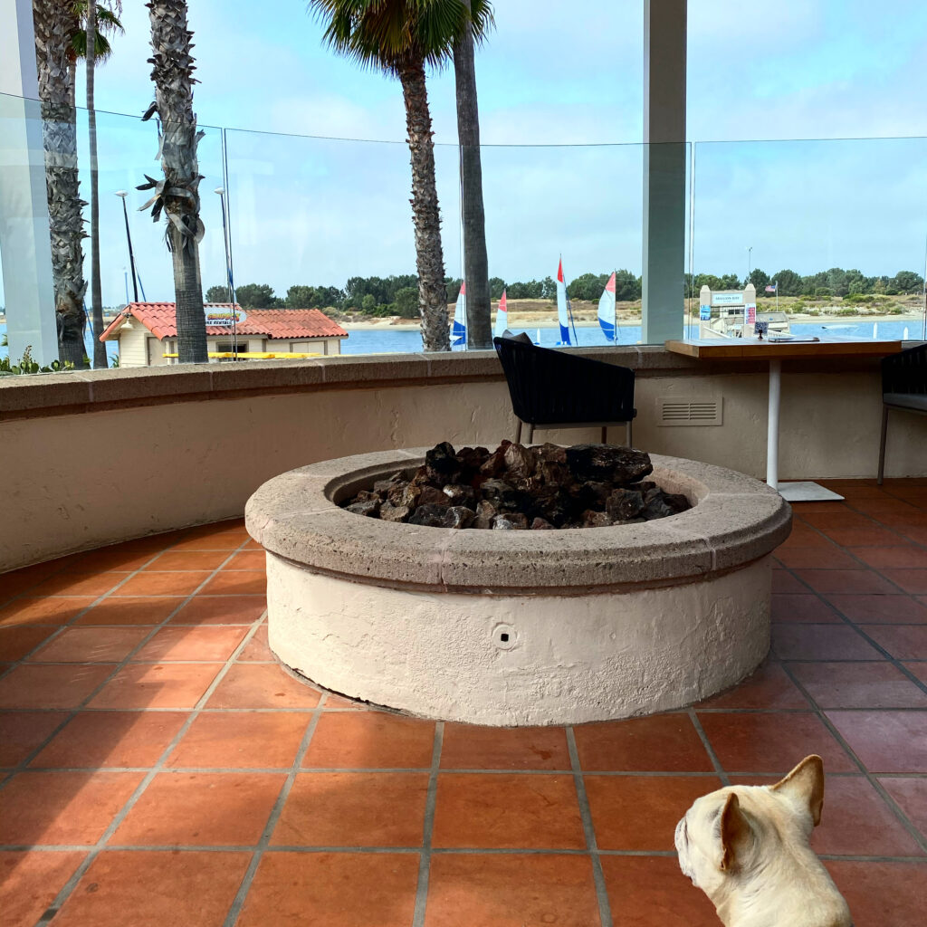 View from Mission Bay Resort Restaurant - Tons of Fun For Kids (and Dogs!)